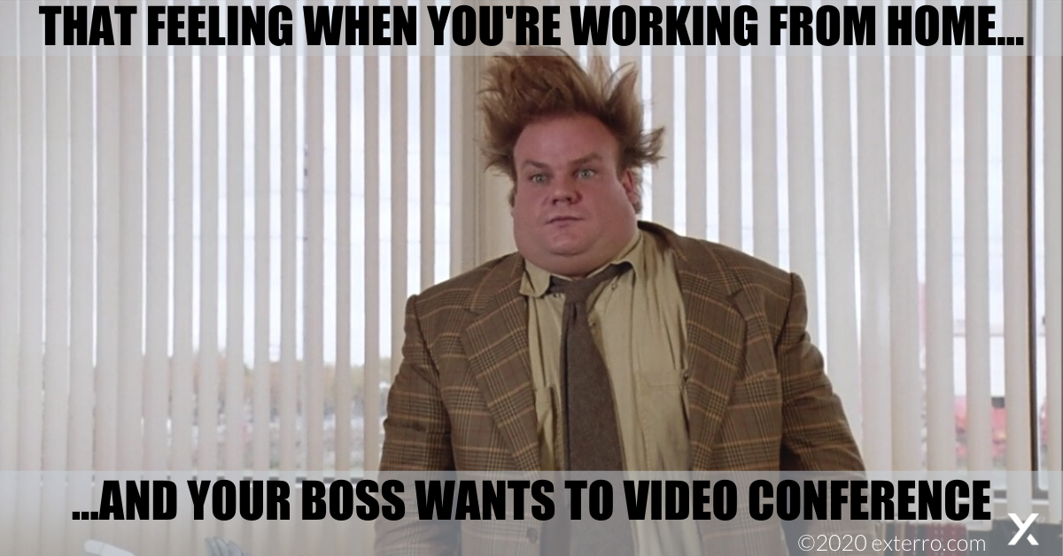 Friday Funnies: Exterro's Meme Series - Working From Home ...