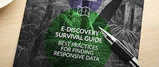 E-Discovery Survival Guide: Best Practices for Finding Responsive Data