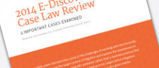 2014 E-Discovery Case Law Review White Paper