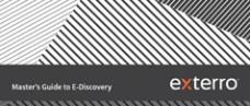 Master's Guide to E-Discovery E-Book