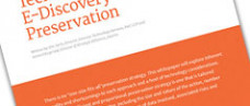 Common Techniques for E-Discovery Preservation White Paper