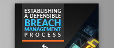 Establishing a Defensible Breach Management Process