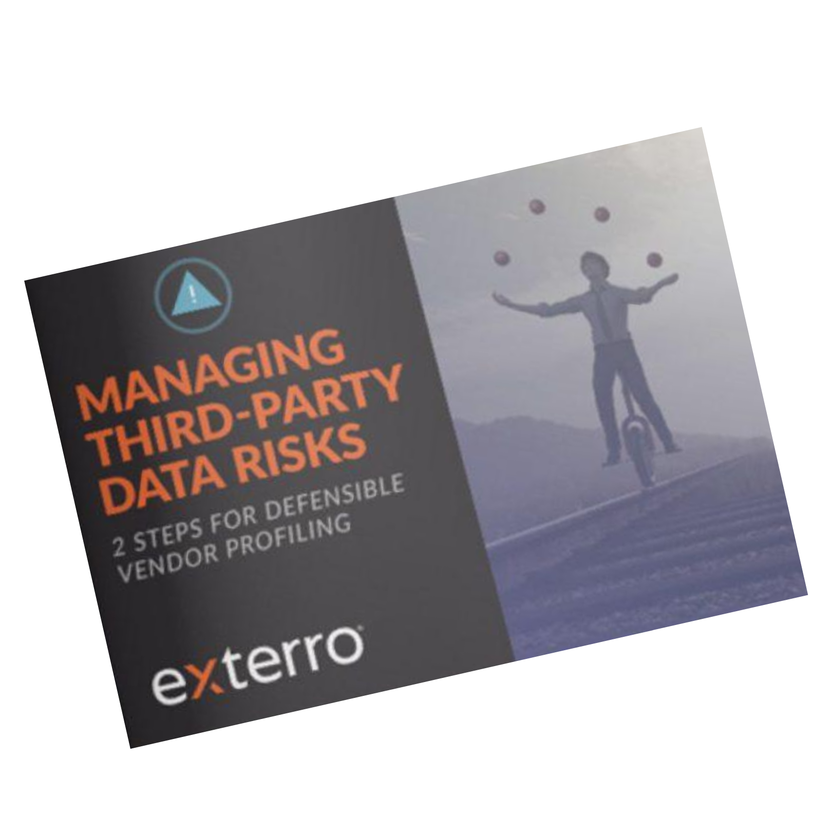 Managing third party data risks og transparent